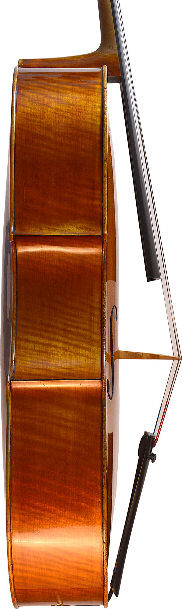 DV542-Cello-Allemand-eclisse